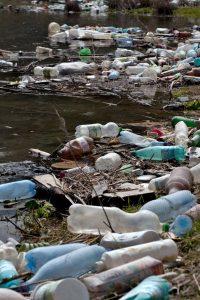 trash-plastic bottles