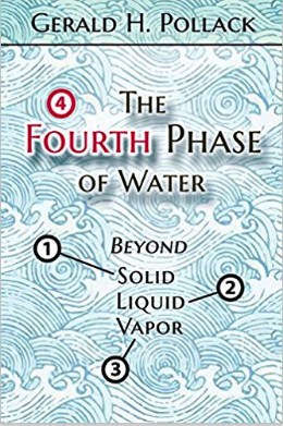 The Fourth Phase of Water book cover photo