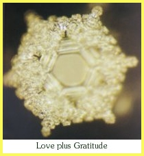 love-Dr. Emoto
